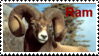 Year of the Ram by KTstamps