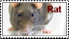 Year of the Rat by KTstamps