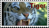 Year of the Tiger by KTstamps