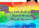 rainbow signature by xindice