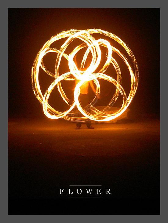 Flower by Redrum8
