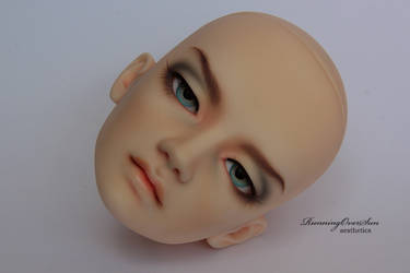 Switch Milhwa NS FaceUp_1 by Ariel-Sun