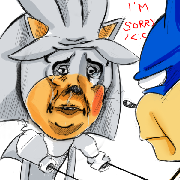Sonic Fans Ftw Anook