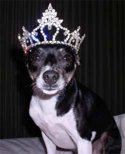 Princess Zoie