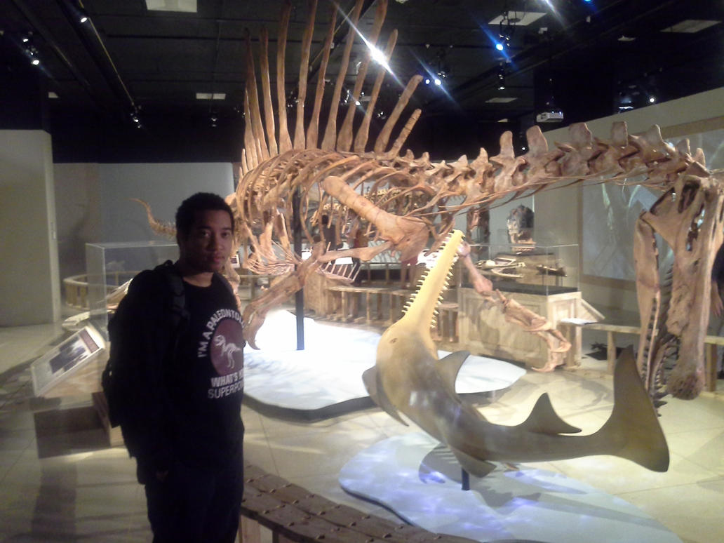 Spinosaurus mount at Nat Geo museum by Ikechi1