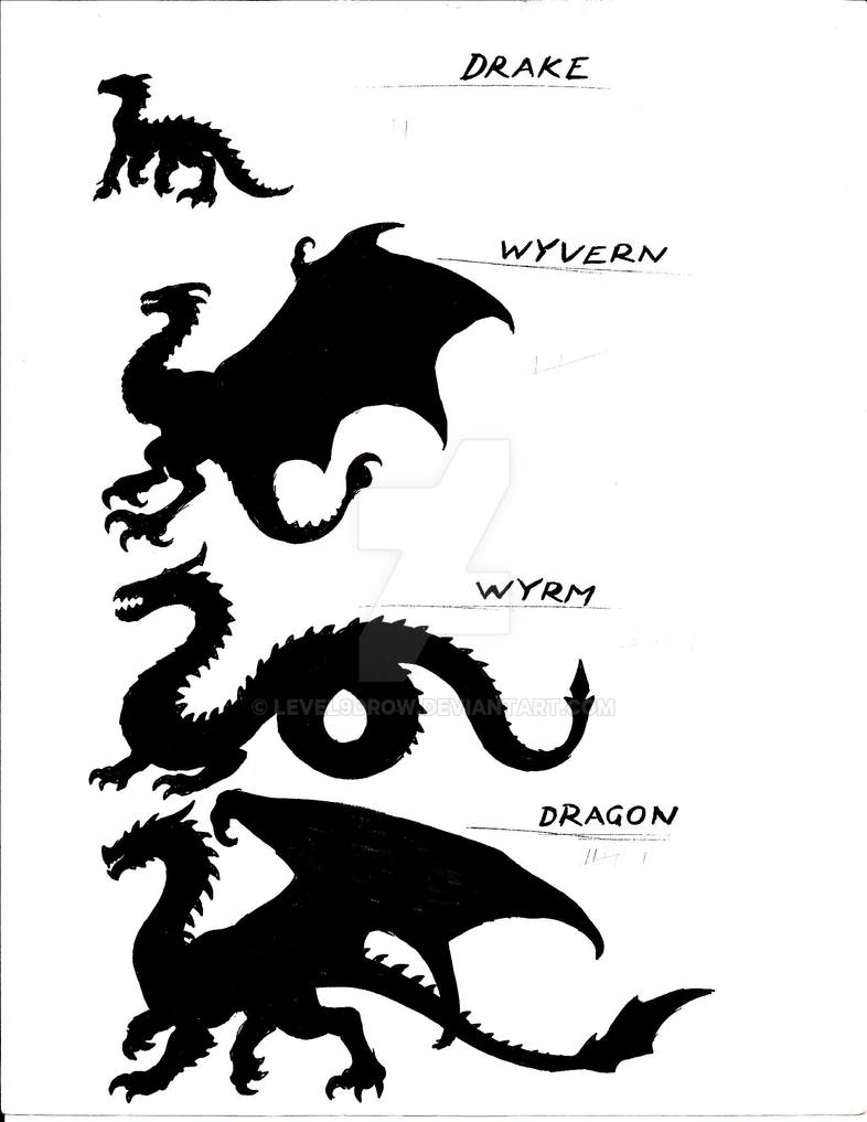 Dragon Species by Level9Drow on DeviantArt