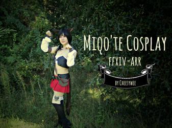 Miqo'te Cosplay Cover
