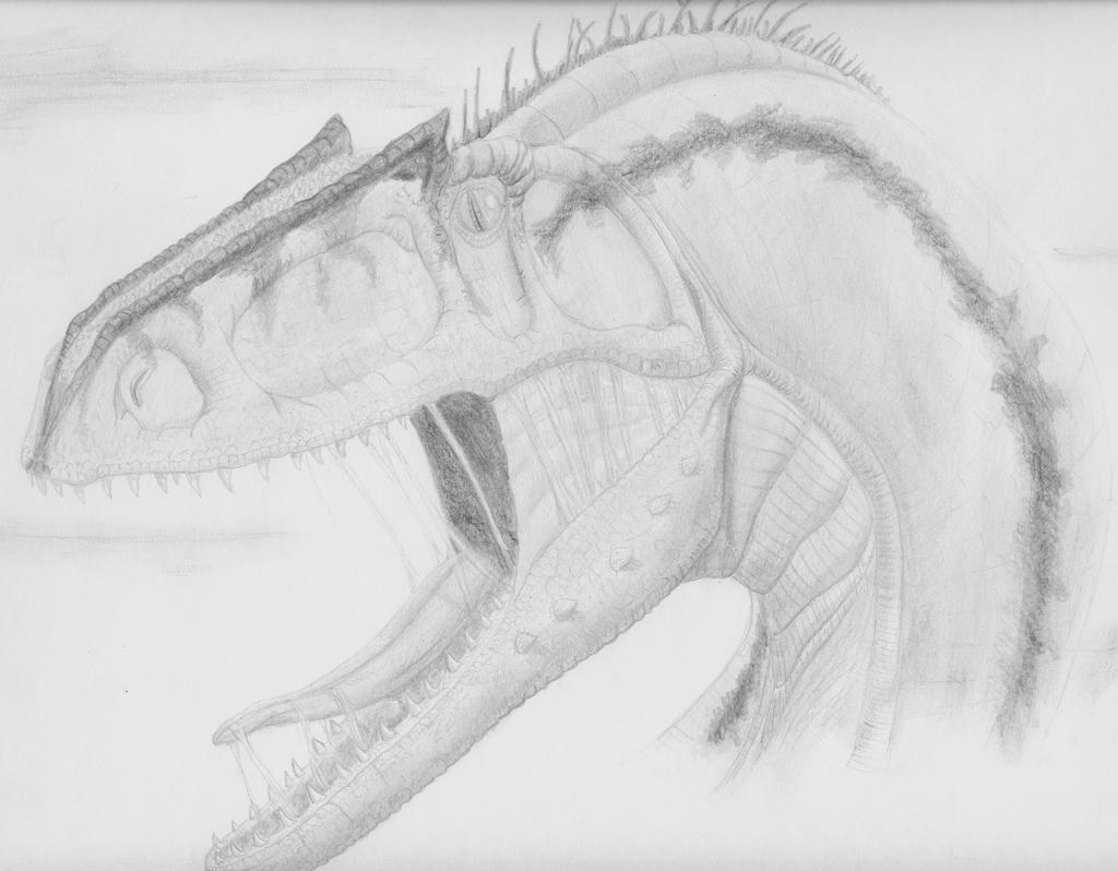 Noasaurus leali