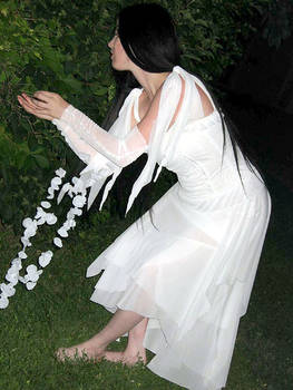 white elfe1