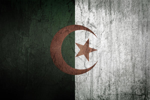 Algeria Grunge Flag by elhadibrahimi