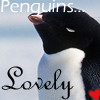 Penguins... Lovely by Grrote