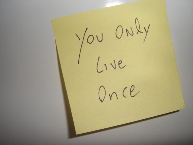 You Only Live Once by LSF-1945