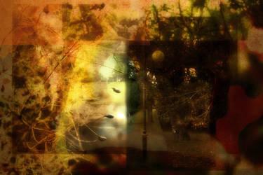 autumnal park by creapicform