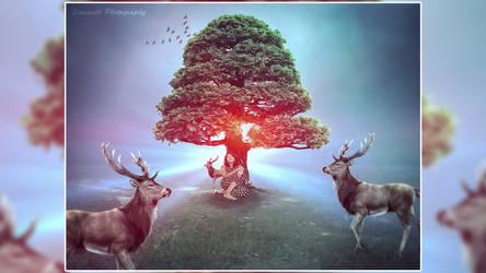 Fantasy Photo Tree Of Life