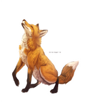 Fuchs Commission