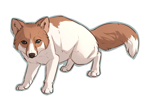 Curious fox cub Johis by Singarl
