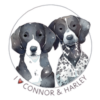 <b>Connor And Harley | Commission</b><br><i>Singarl</i>
