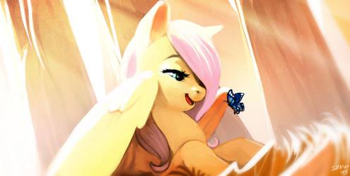 Flutterwonder by Imalou