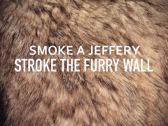 Stroke the furry wall downloads