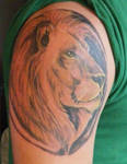 lion head ta2
