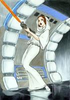 Princess Leia by stvkar