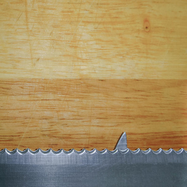 Shark infested breadboard by RGDart