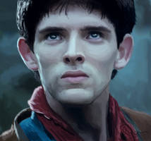 Merlin by Nollaig
