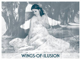 Wings of Ilusion