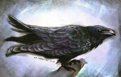 Raven by NikSebastian