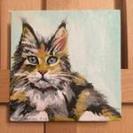 Maine Coon Kitten on Tiny Canvas