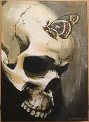 Skull and Moth by NikSebastian