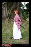 Kenshin: Wandering Swordsman