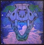 Skull Canvas 1 by AimOfDestiny
