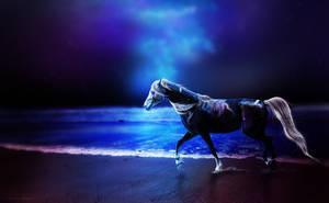 NIGHTSKY by Patchwork-Hearts