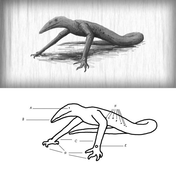 Skull Crawler by PLASTOSPLEEN