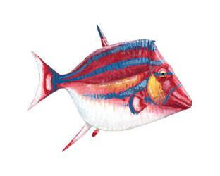 Scalacurvichthys naishi mk. 2 by PLASTOSPLEEN