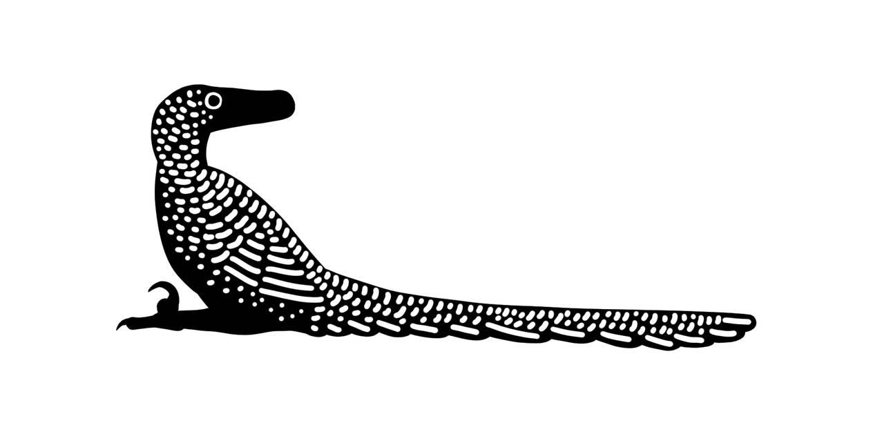 Velociraptor by PLASTOSPLEEN