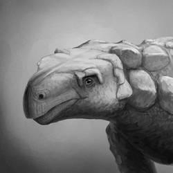 Kunbarrasaurus Portrait