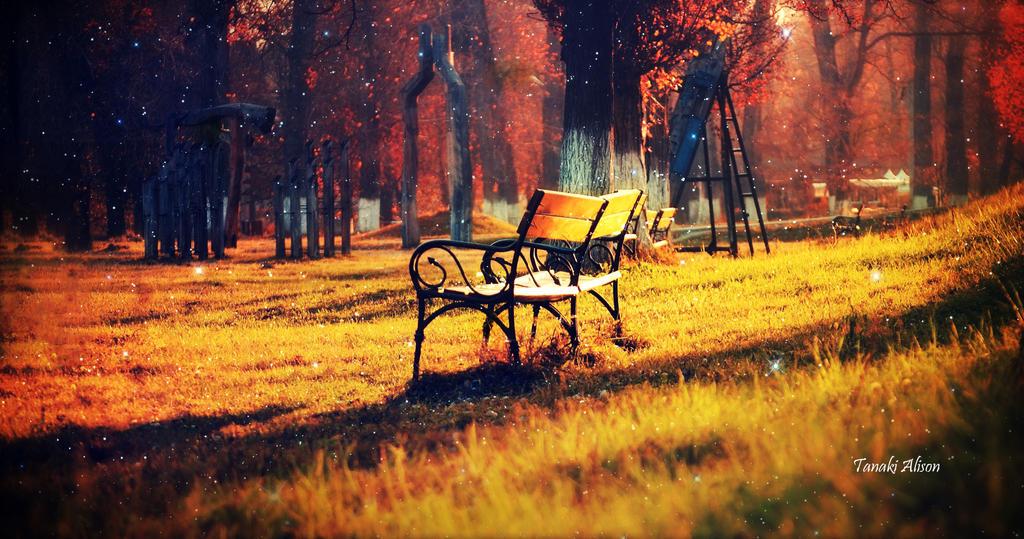 Daydream by TheBroth3R