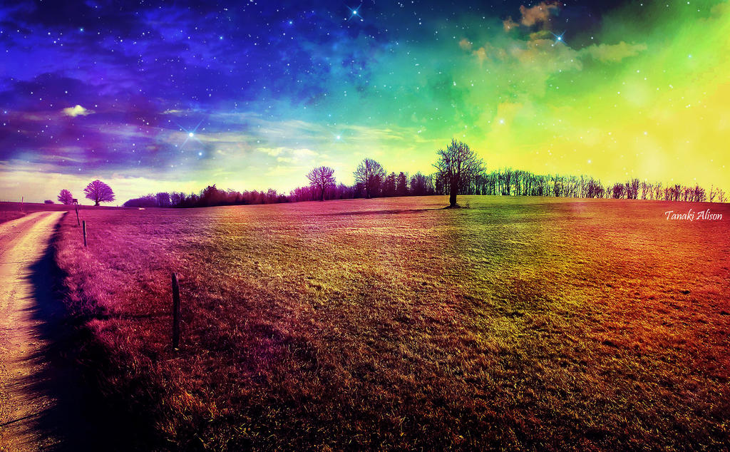 Field of Imagination by TheBroth3R
