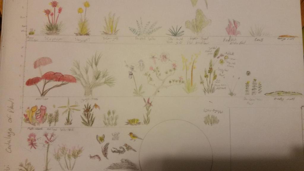 Tepui plants sketch by sneekyfox