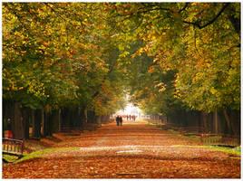 Autumn IV by Andrei-Joldos