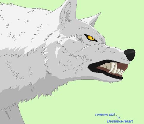 Anime Wolf Base By Destinys Heart
