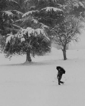 Walking under the Snow 02
