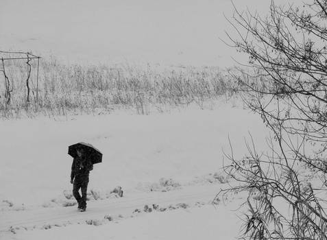 Walking Under the Snow 04