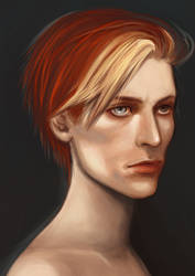 Bowie by Vixen-of-Vines
