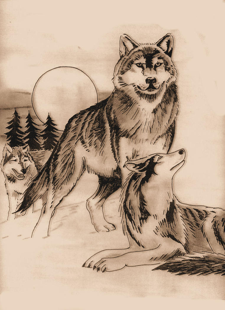 wolf tattoo request by agaricgreywolf on deviantart. Black Bedroom Furniture Sets. Home Design Ideas