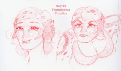 Day 29_Thundercat-Candice