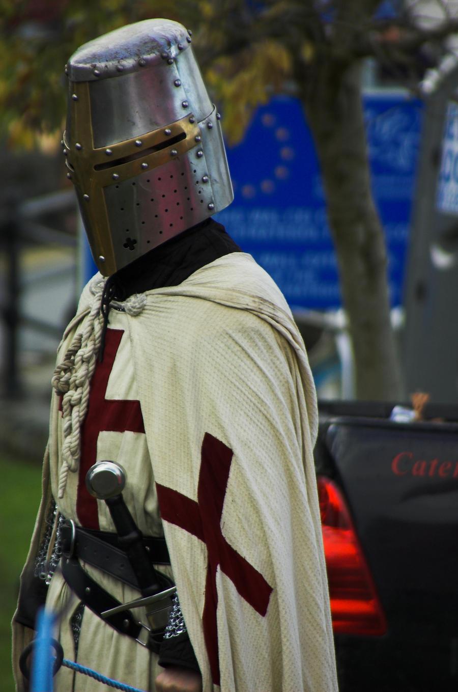 Crusader by Aconitum-Napellus