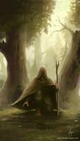 The Hunter by YngveMartinussen
